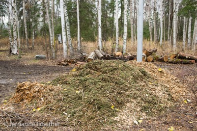 Chipped brush pile in foreground with firewood logs behind.