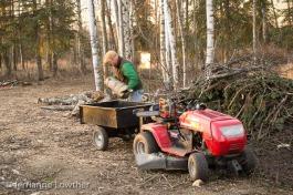 Dean Kalbfleisch unloads firewood next to brush pile at trailhead in Arnold L. Muldoon Park.
