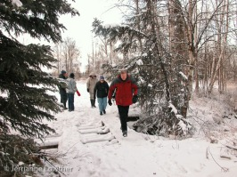 We crossed Chester Creek onto the old Alaska Greenhouse property & headed into the woods.