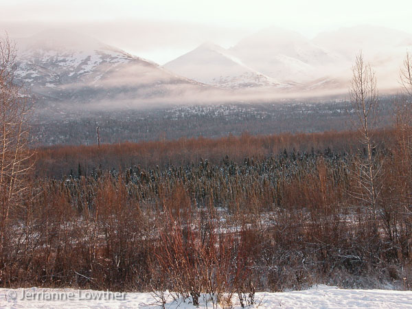 The open area at the rear of the property overlooks Joint Base Elmendorf-Richardson lands & the Chugach Mountain Range.
